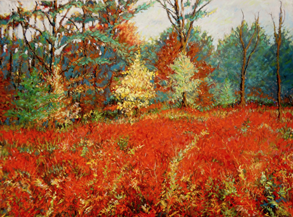 Rash of Fall Colors by Dennis Hicks